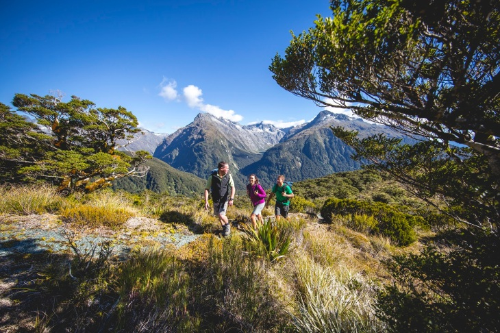 Routeburn Track Guided Walk, Key Summit with Trips & Tramps